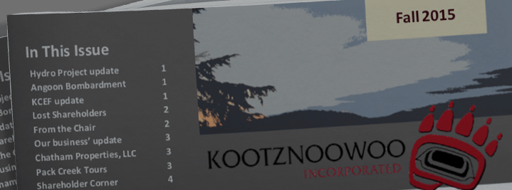 Kootznoowoo, Inc News 2015